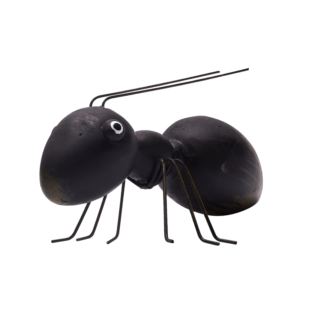 mrówka apia buty lookbook 2019